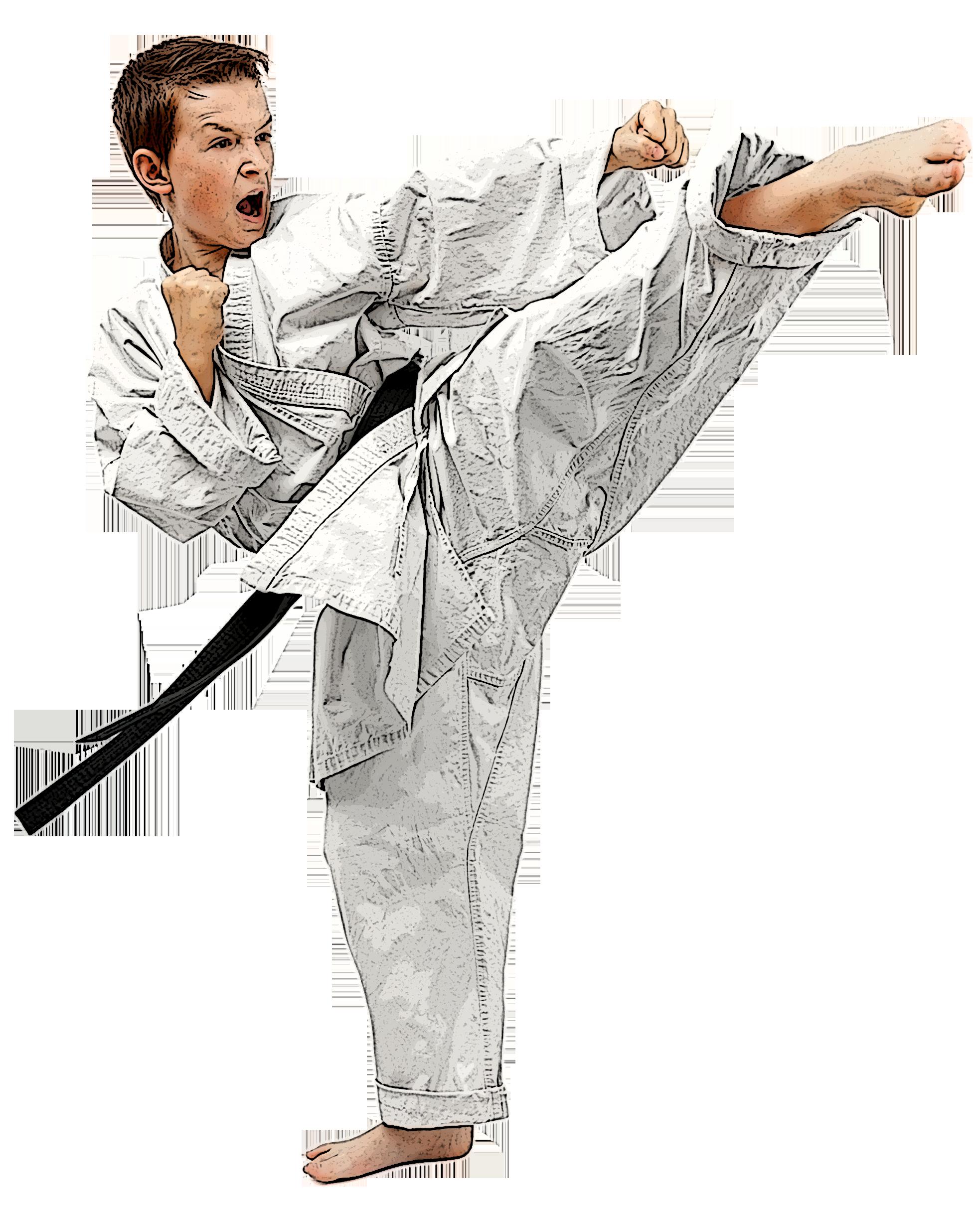 Grip Taekwondo Mats